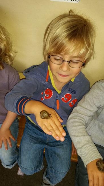 Vous regardez une image de l'article: Elevage d'escargots à l'école de Labatut-Rivière